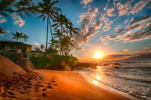 hawaii__summer_home_by_alierturk-d5bv07g (1)