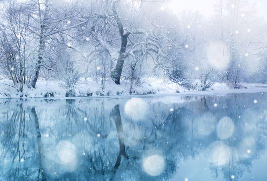 Winter-pond
