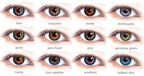 List Of Synonyms And Antonyms Of The Word Natural Eye Color Chart