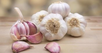 12_How-to-use-garlic-as-natural-antibiotic